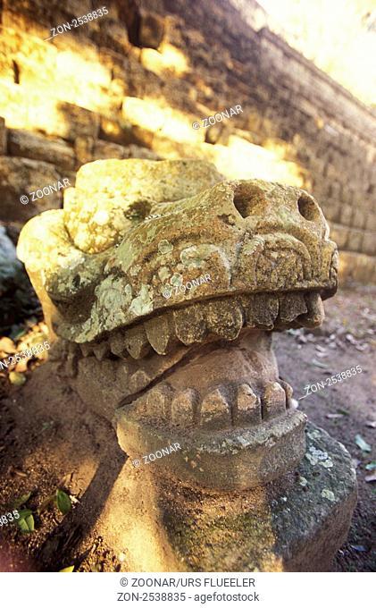 Ein Steinkopf in den Maya Ruinen von Copan im Bergdorf Copan im westen von Honduras in Zentralamerika