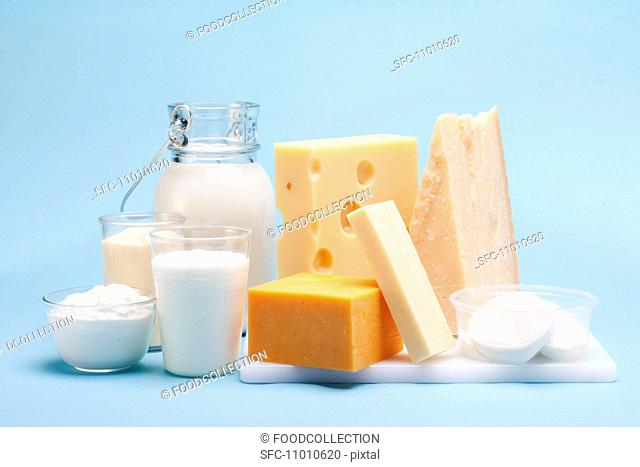 Various milk products cheese, yoghurt, quark, milk on a blue background