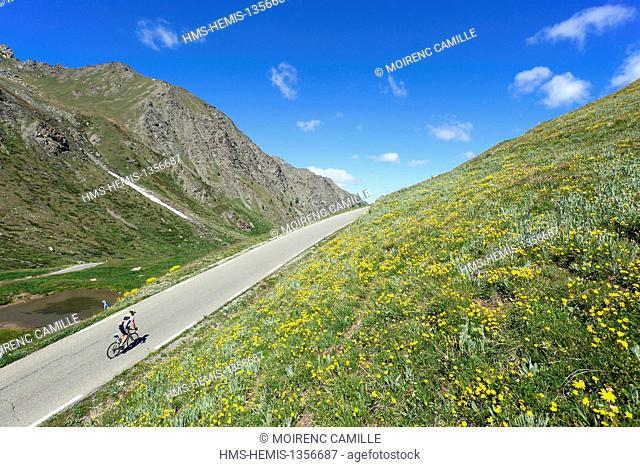 France, Hautes Alpes, Parc Naturel Regional du Queyras (Natural regional park of Queyras), Col Agnel road 2744 m
