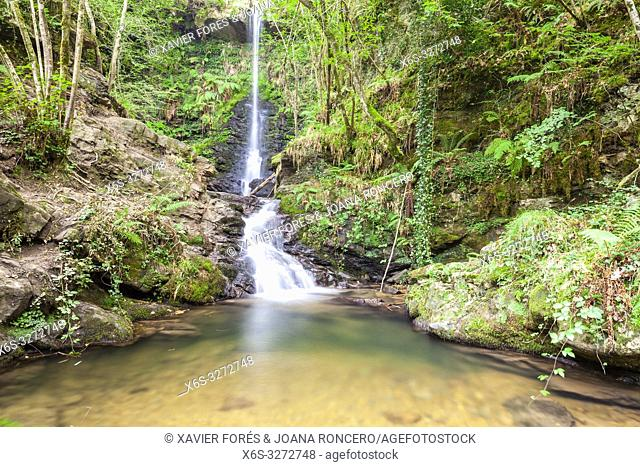 Natural Park of Saja-Besaya, Cantabria, Spain