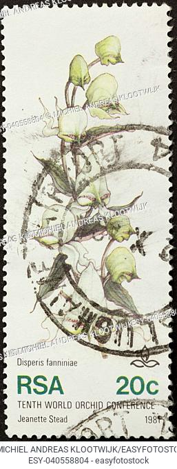 RSA - 1981: Stamp printed in the Republic of South Africa shows a picture of an orchid, 1981