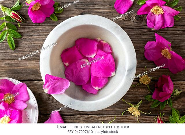Fresh Rugosa rose petals in a mortar, top view