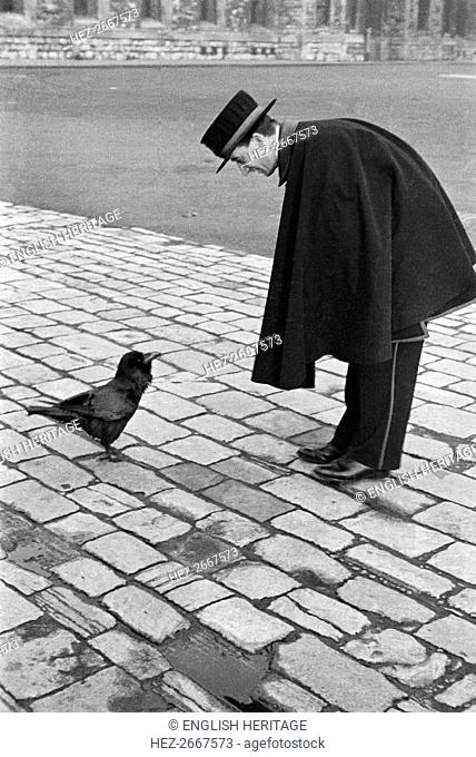Beefeater bending down to address a raven, Tower of London, Tower Hill, London, late 1930s. Artist: John Gay