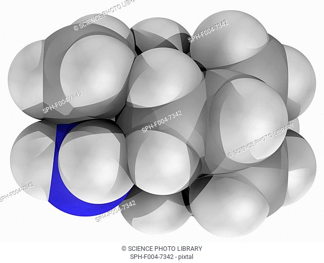 Rimantadine, molecular model. Antiviral drug used to treat influenza A infection. Atoms are represented as spheres and are colour-coded: carbon grey