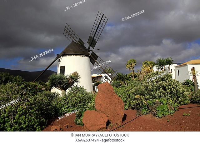 Windmill and garden at Centro de Artesania Molinos de Antigua, Fuerteventura, Canary Islands, Spain