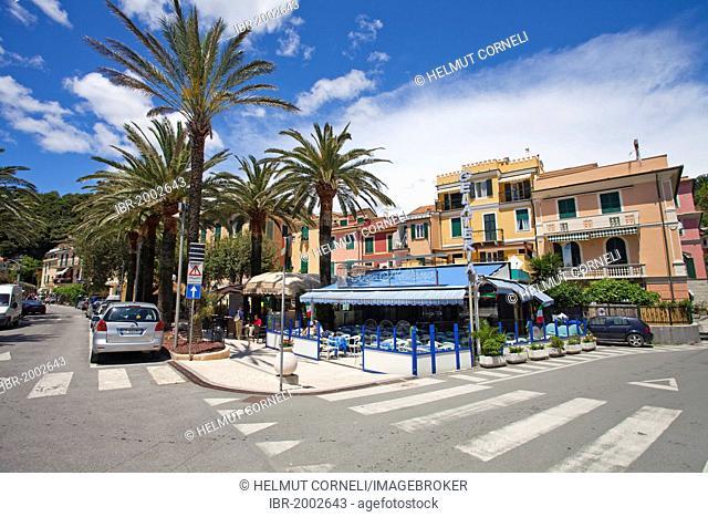 Intersection, restaurant, bar, palm trees, Moneglia, Genoa Province, Liguria, Italian Riviera or Riviera di Levante, Italy, Europe