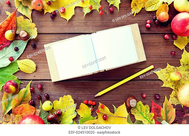 nature, season, inspiration and memories concept - close up of empty note book or album with pencil in frame of autumn leaves