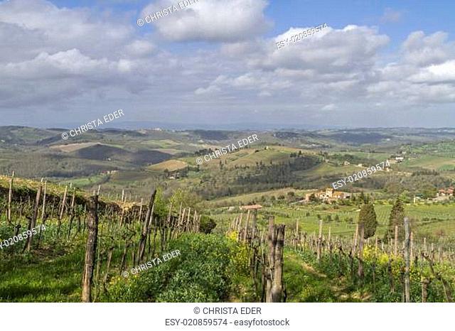 Landschaft im Chianti