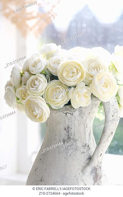 imitation white roses in jug at window. England UK