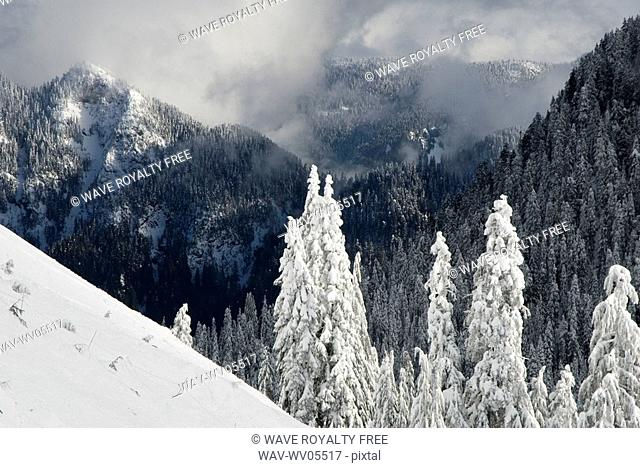 North Shore mountains, Vancouver, BC