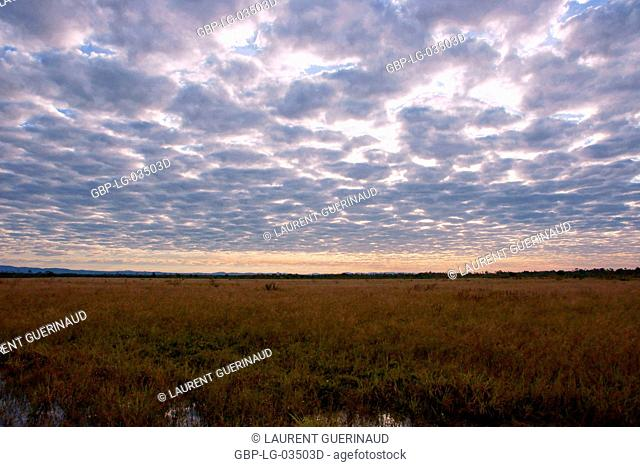 Sunset, Pantanal, Mato Grosso do Sul, Brazil