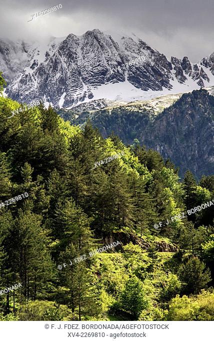 Oza Valley also called Selva de Oza, Valles Occidentales Nature Park, Huesca Pyrenees. Aragon, Spain