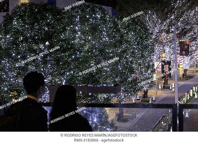 November 19, 2018, Tokyo, Japan - Visitors enjoy the view of the winter decorations at Roppongi Hills in Tokyo. Approximately 700