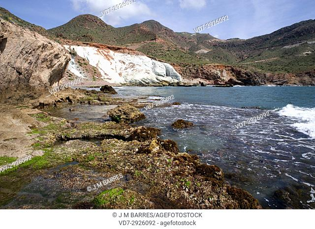 Cala Raja with volcanic rocks. Cabo de Gata-Nijar Natural Park, Almeria province, Andalucia, Spain