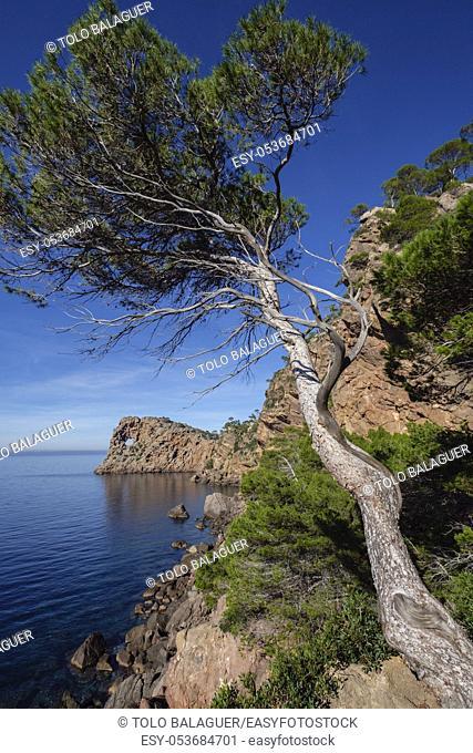 Sa Foradada término municipal de Deyá, Mallorca, balearic islands, Spain