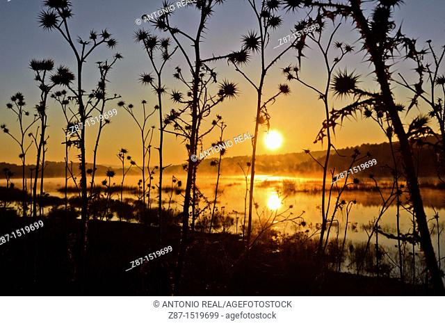 Almansa reservoir at dawn, Albacete province, Castilla-La Mancha, Spain