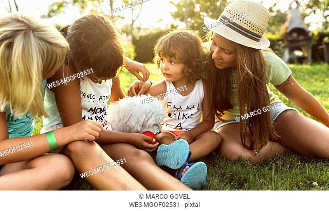 Four girls playing with a puppy on a meadow
