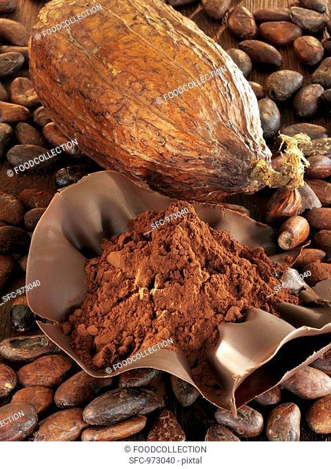 Cocoa fruit, cocoa beans and cocoa powder