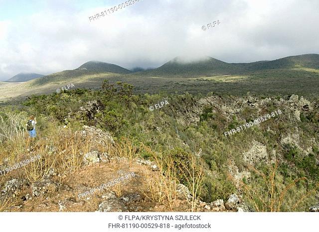 Highland landscape, Parte Alta, Puerto Velasco Ibarra, Floreana, Galapagos