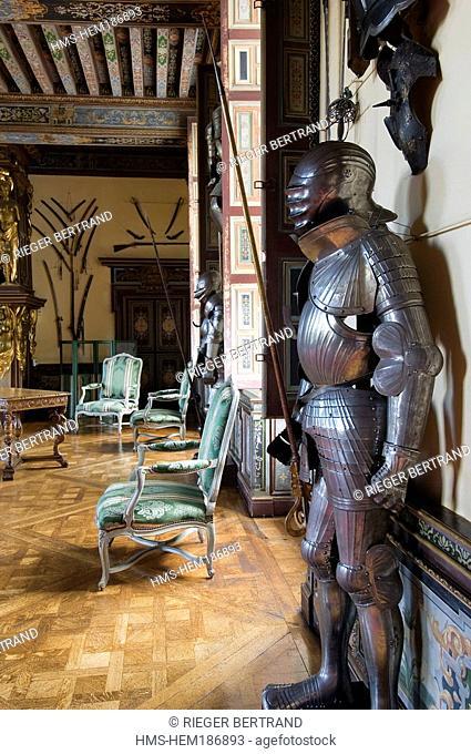 France, Loir et Cher, Chateau de Cheverny, armoury