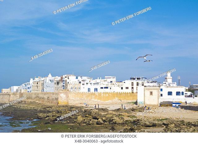 Medina, Essaouira, Morocco, northern Africa