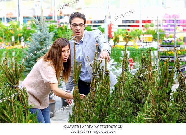 Couple buying Christmas tree, garden center