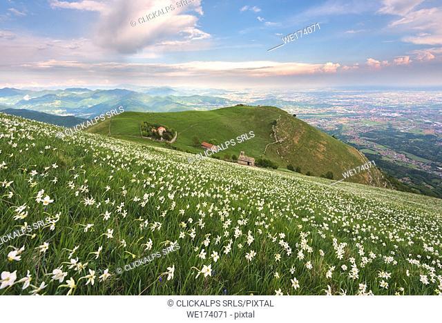 Mount Linzone, Orobie alps, Lombardy district, Bergamo province, Italy