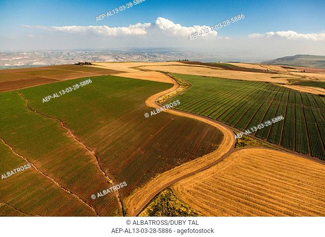 Galil Fields
