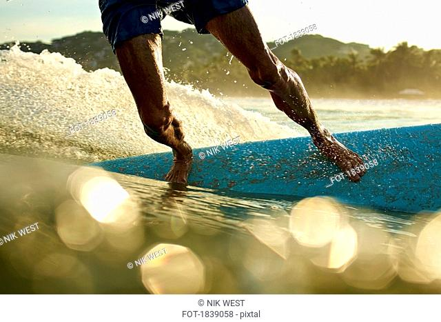 Male surfer on surfboard on sunny, sunrise ocean, Sayulita, Nayarit, Mexico