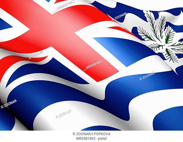 Flag of British Indian Ocean Territory. Close up