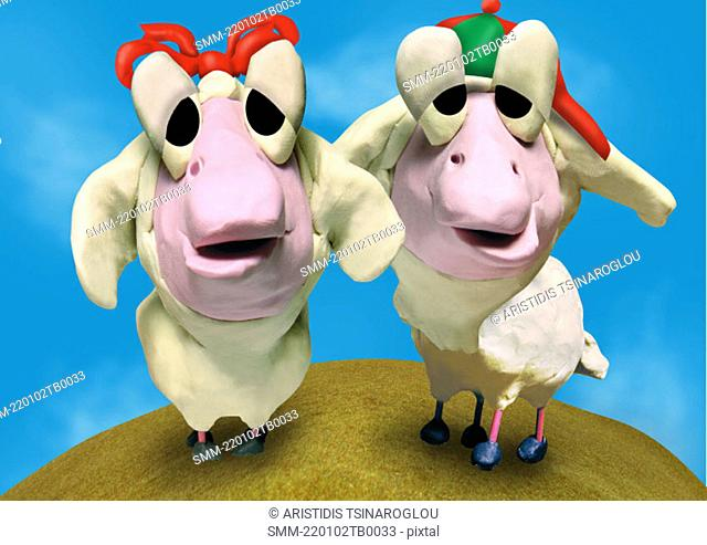 Male and female sheep standing side by side