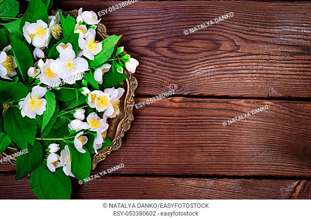 Bouquet of white blossoming jasmine on a copper plate, brown wooden background, empty space on the right