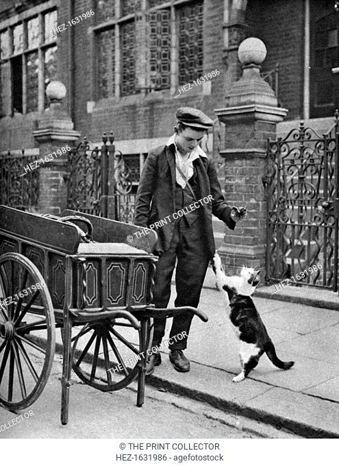 'Cat's meat man', London, 1926-1927. Illustration from Wonderful London, edited by Arthur St John Adcock, Volume I, published by Amalgamated Press, (London