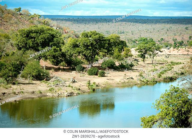 View of river with Impala (Aepyceros melampus), Kruger National Park, Transvaal, South Africa