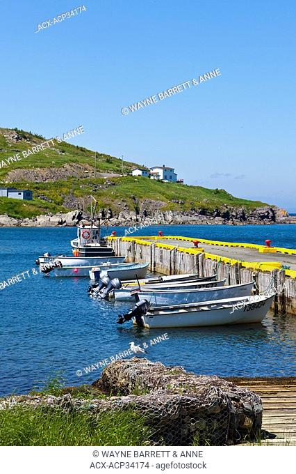 Fishing boats tied up at the wharf in Winterton, Newfoundland and Labrador, Canada