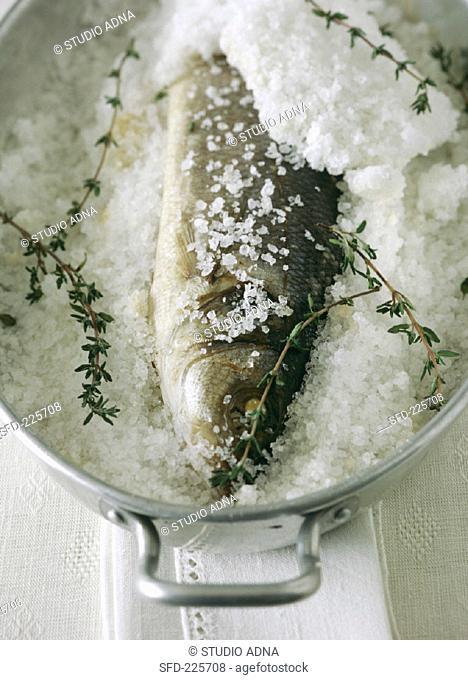 Perch, preserved in salt, in a pot
