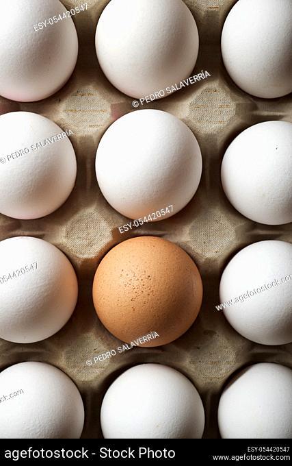 Chicken eggs in a cardboard box