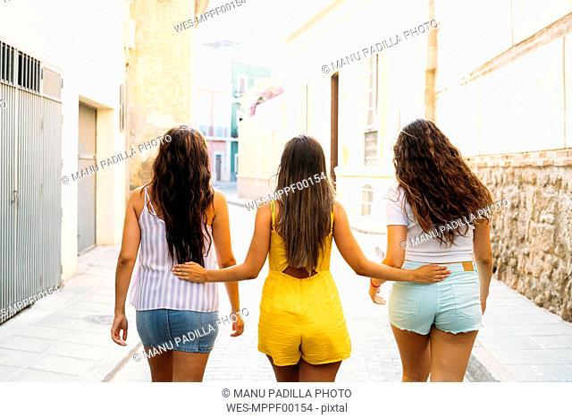 Rear view of three female friends walking in an alley