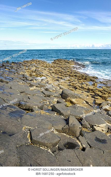 Natural phenomenon Giant's Causeway with hexagonal basalt blocks on the coast at Bushmill, County Antrim, Northern Ireland, United Kingdom, Europe