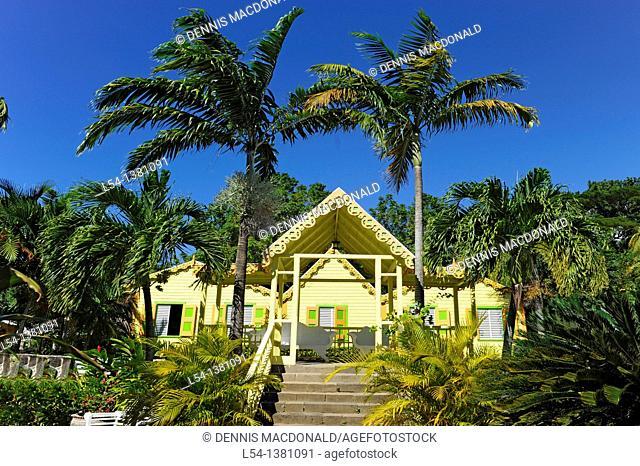 Romney Manor Botanical Gardens Basseterre St  Kitts Caribbean Island Cruise NCL