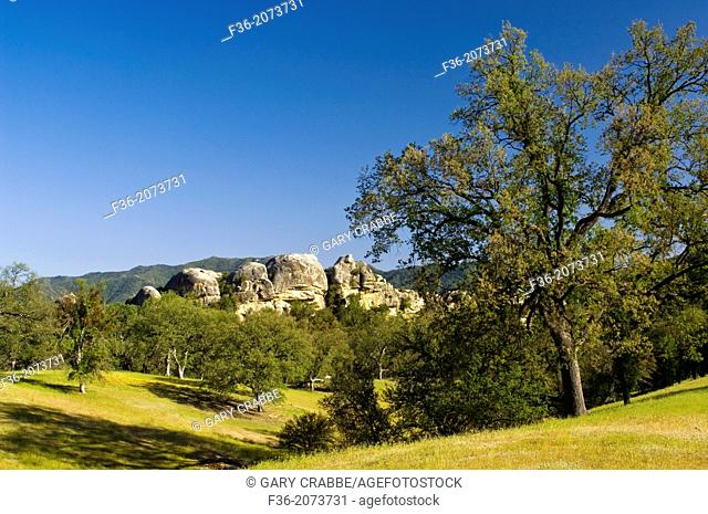 Oak trees, green hills, and rock outcrop in spring, Ventana Wilderness, Los Padres National Forest, California