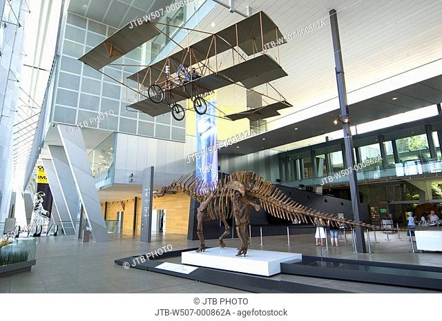 Melbourne museum, internal, Melbourne, Australia