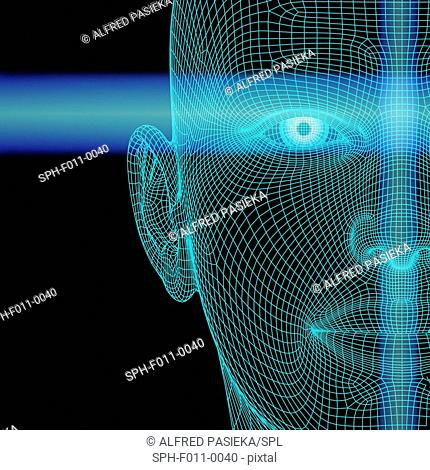 Biometric polygon head, computer artwork. The blue lines are depicting scan lines from a biometric device. The identification of a behavioural or physical trait...