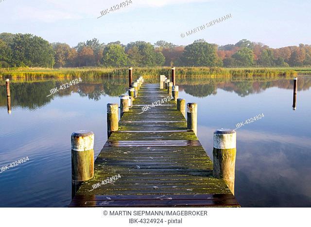 Jetty, Port Prerow at Prerower Strom or Prerowstrom, Darss, Fischland-Darß-Zingst, Western Pomerania Lagoon Area National Park, Baltic Coast