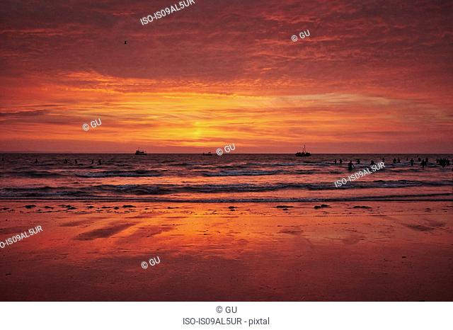 Large group of silhouetted swimmers racing in sea at sunrise, Tenby, Wales, UK