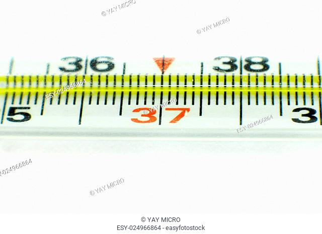 Medical thermometer isolated on the white background