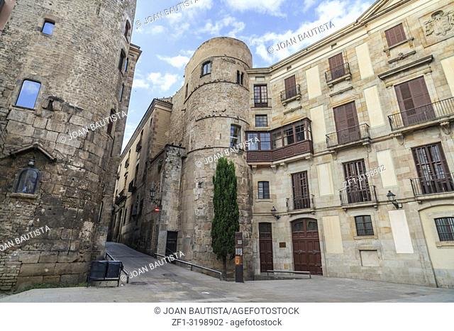 Cathedral square in gothic quarter of Barcelona