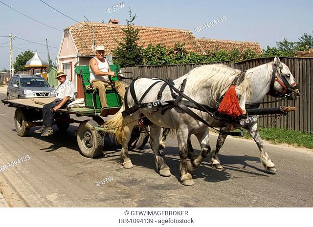 Countrymen driving a horse cart, Sibiel, Transylvania, Rumania