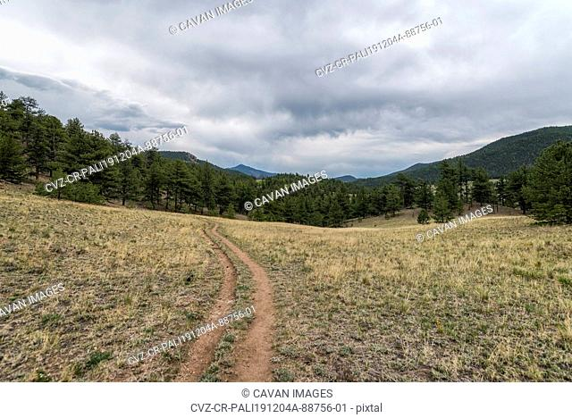 Trail in the Lost Creek Wilderness