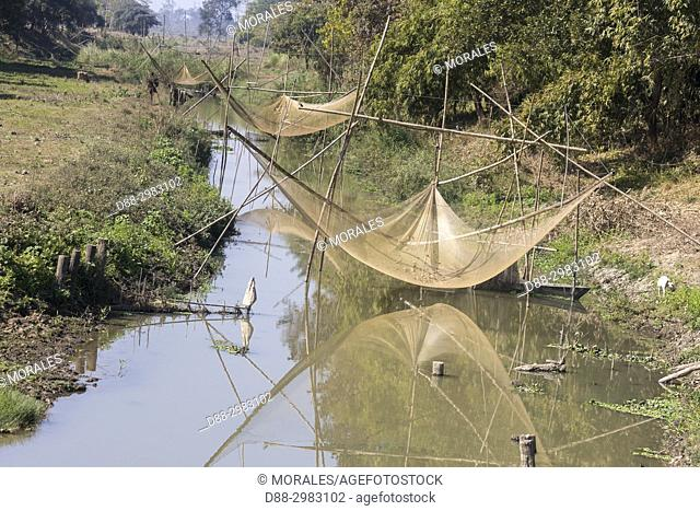 India, State of Assam, Kaziranga National Park, fishing small fishes in the marshes with nets and children